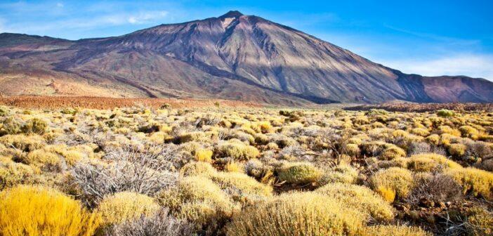 Urlaub auf Teneriffa: lieber Ferienwohnung oder Pauschalurlaub?