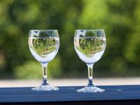 Probieren Sie den Wein der Nahe auf einer Weinwanderung durch die Weinberge.