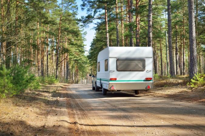 Sie lieben Camping direkt im Wald? Dann ab nach Frankreich! (#2)